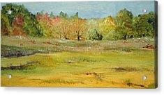 Maine Marsh Acrylic Print by Jean Blackmer