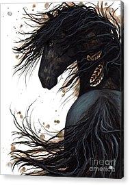Majestic Friesian 143 Acrylic Print by AmyLyn Bihrle