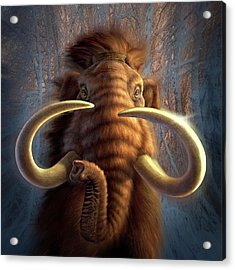 Mammoth Acrylic Print by Jerry LoFaro
