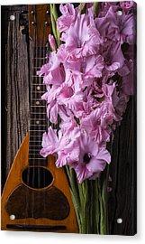 Mandolin And Glads Acrylic Print by Garry Gay