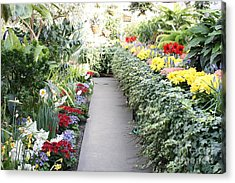 Manito Park Conservatory Acrylic Print by Carol Groenen