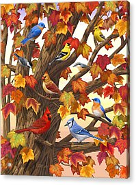 Maple Tree Marvel - Bird Painting Acrylic Print by Crista Forest