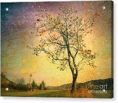 March 27 2010 Acrylic Print by Tara Turner