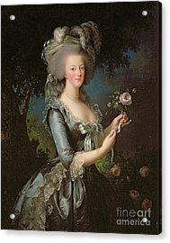Marie Antoinette Acrylic Print by Elisabeth Louise Vigee Lebrun