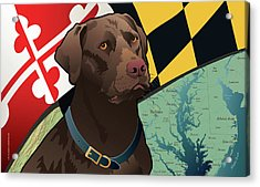 Maryland Chocolate Lab Acrylic Print by Joe Barsin