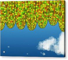 Math Corn Acrylic Print by GuoJun Pan