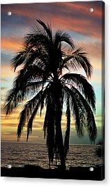 Maui Hawaii Sunset Palm Acrylic Print by Pierre Leclerc Photography