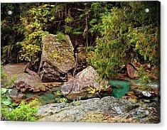 Mcdonald Creek 11 Acrylic Print by Marty Koch