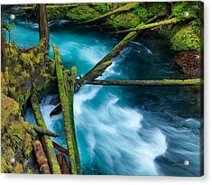 Mckenzie River Color Acrylic Print by Leland D Howard