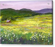 Meadow Of Flowers Acrylic Print by David Patterson