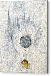 Medallion Acrylic Print by Don Ziegler
