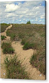 Mentor Headlands Beach Trail Acrylic Print by Brian M Lumley
