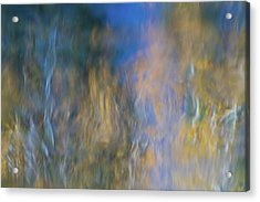 Merced River Reflections 14 Acrylic Print by Larry Marshall