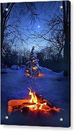 Merry Christmas Acrylic Print by Phil Koch