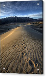 Mesquite Flats Footsteps Acrylic Print by Peter Tellone