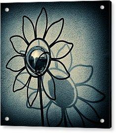 Metal Flower Acrylic Print by Dave Bowman
