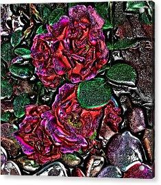 Metal Roses Acrylic Print by Susan Kinney