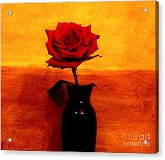 Mexicalli Rose Acrylic Print by Marsha Heiken