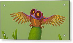 Mexican Owl Acrylic Print by Jasper Oostland