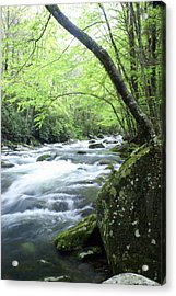 Middle Fork River Acrylic Print by Marty Koch