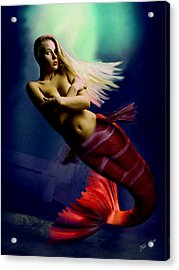 Midnight Delight Acrylic Print by Tray Mead