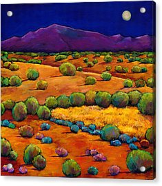 Midnight Sagebrush Acrylic Print by Johnathan Harris