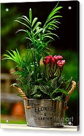 Mini Garden Country Style By Kaye Menner Acrylic Print by Kaye Menner