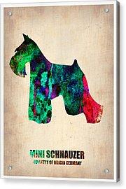 Miniature Schnauzer Poster 2 Acrylic Print by Naxart Studio