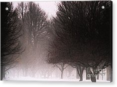 Misty Acrylic Print by Linda Shafer