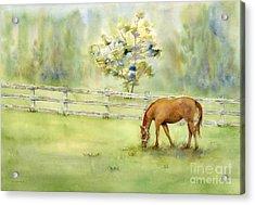 Misty Morning Acrylic Print by Amy Kirkpatrick
