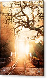 Misty Old Railroad Bridge At Near Historic Niles 7d10745 Acrylic Print by Wingsdomain Art and Photography