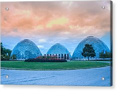 Mitchell Park Conservatory,the Domes Acrylic Print by Art Spectrum