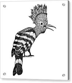 Mohawk Bird Acrylic Print by Karl Addison