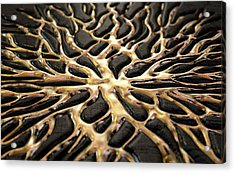 Molten Gold Seeping Out Of Rock Acrylic Print by Allan Swart