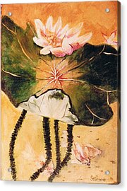 Monet's Water Lily Acrylic Print by Seth Weaver