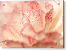 Moning Freshness. Natural Watercolor. Touch Of Japanese Style Acrylic Print by Jenny Rainbow