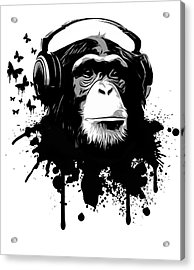 Monkey Business Acrylic Print by Nicklas Gustafsson