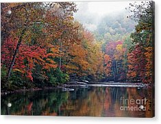Monongahela National Forest Acrylic Print by Thomas R Fletcher