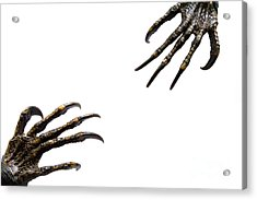 Monster Try To Grab Their Hand Together Acrylic Print by Caio Caldas
