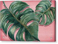 Monstera Leaf  Acrylic Print by Mark Ashkenazi
