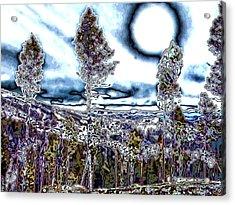 Montana Trippin Acrylic Print by Susan Kinney