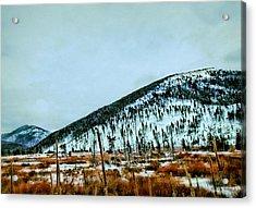 Montana View Acrylic Print by Susan Kinney
