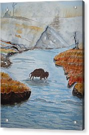 Montana Wildlife Acrylic Print by Warren Thompson
