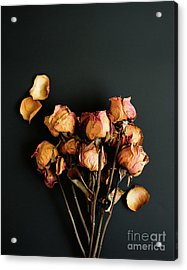 Moody Roses II Still Life Photo Acrylic Print by Sonja Quintero