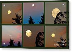 Moon Time Acrylic Print by Joyce Woodhouse