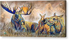 Moose Meadows Acrylic Print by Teshia Art