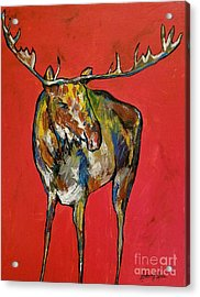Moozie Acrylic Print by Anderson R Moore