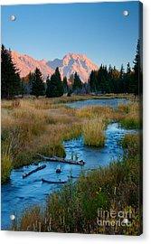 Moran Morning Acrylic Print by Idaho Scenic Images Linda Lantzy