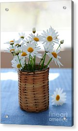 Morning Daisies Acrylic Print by Elena Elisseeva