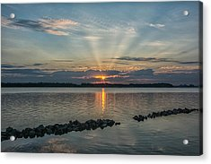 Morning Glory Acrylic Print by Donnie Smith